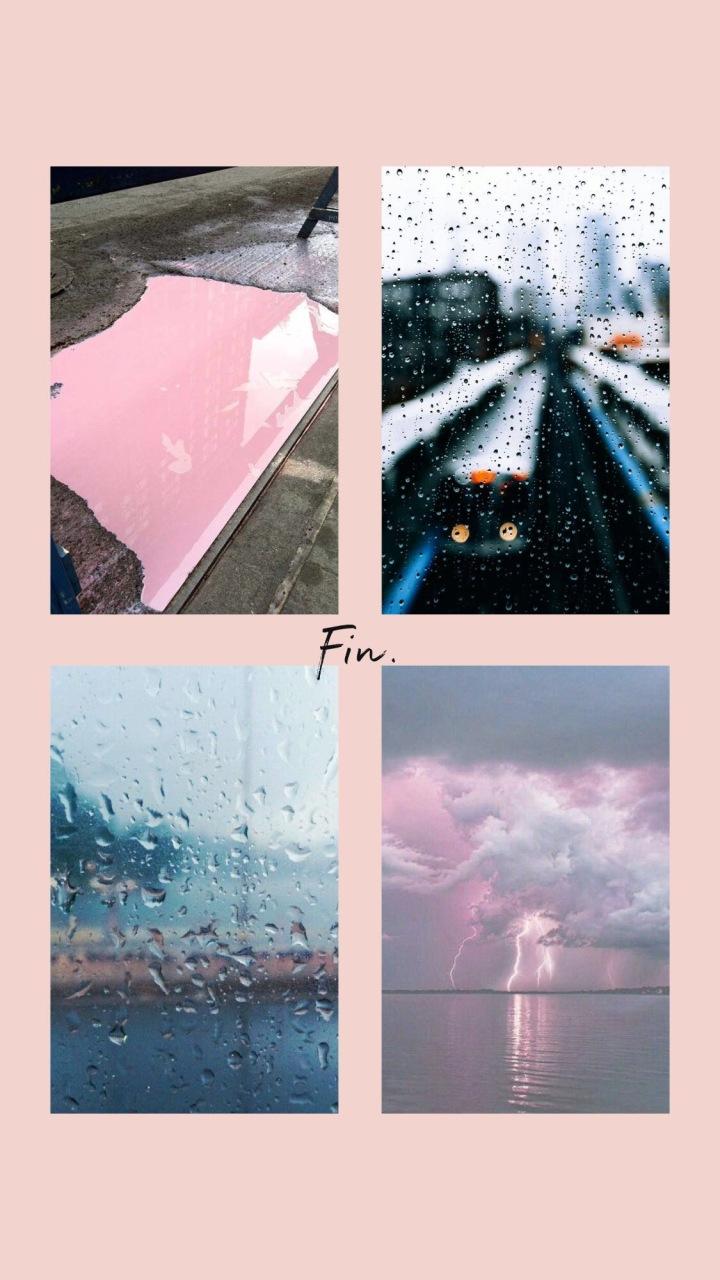 amy rose living monday mood pink rain